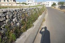 muro-leccese-012.jpg