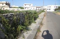 muro-leccese-016.jpg