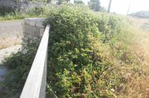 muro-leccese-030.jpg