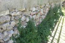 muro-leccese-015.jpg